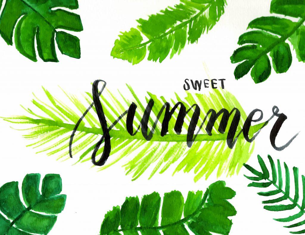 sweet summer tropical leaves